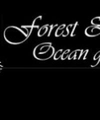 Forest & Ocean Gallery