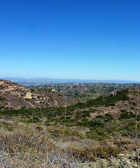 Coast Overlook