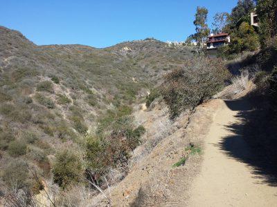 Valido Trail